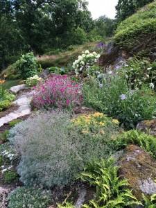 Karins Trädgård 2